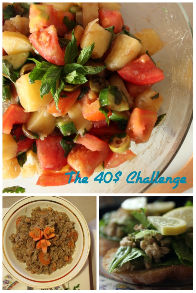 The 40$ Challenge 01