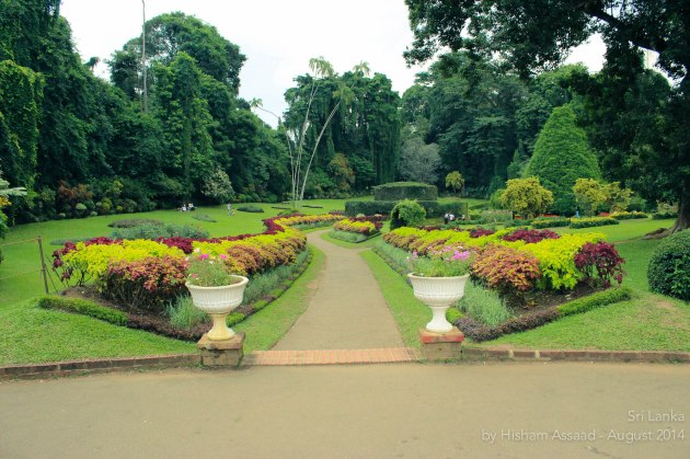 Royal Botanical Garden