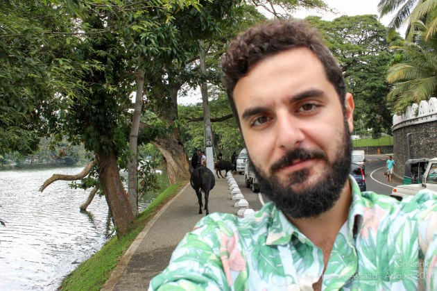 Selfie with the loose cows by Kandy Lake