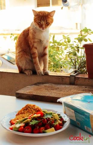 Eying the dish