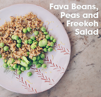 TINY-Freekeh fava beans peas salad recipe cookin5m2-4.jpg