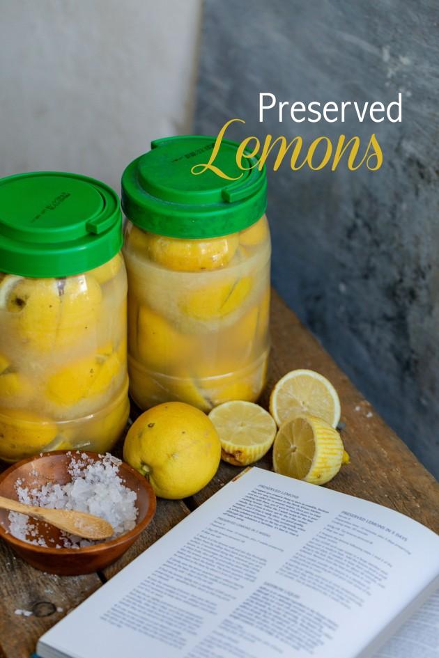 PIN-lemon orange squeeze-7815.jpg